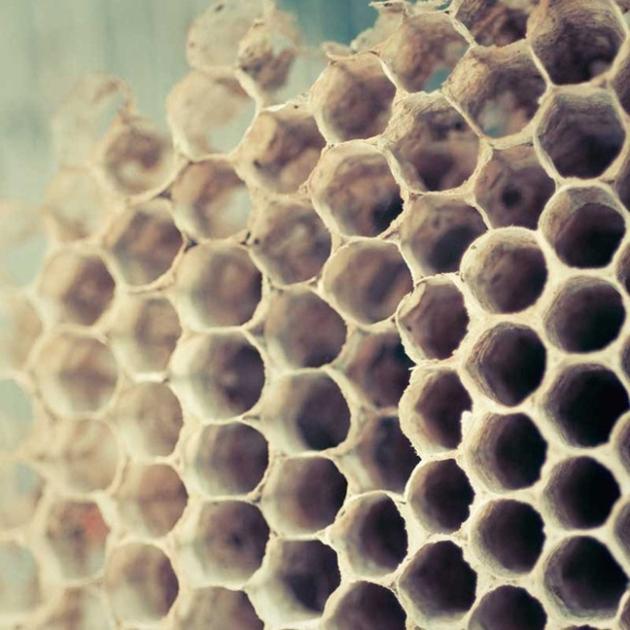 honeycomb9